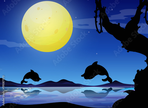 silhouette-background-scene-with-dolphin-at-night