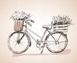 Bike with big bunch of flowers. Sketch.
