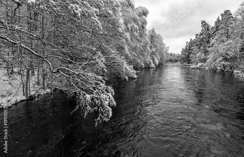 Foto op Plexiglas Grijs Monochromatic winter landscape for Swedish river