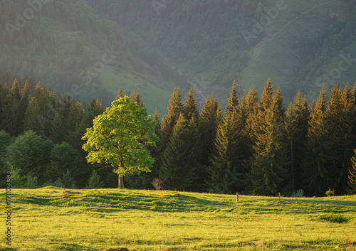 Mountain valley during sundown. Beautiful naural landscape in the summer time