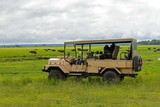 Chobe national park view - 191131195