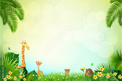 Fototapeta Jungle or Zoo Themed Animal Background