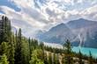 Peyto Lake from Bow Summit