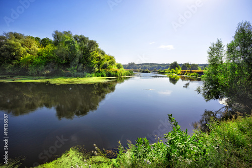 Fotobehang Grijze traf. Sunny day on the river with green trees on the shore