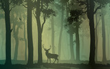 Deciduous forest with birds and deer - 191156978