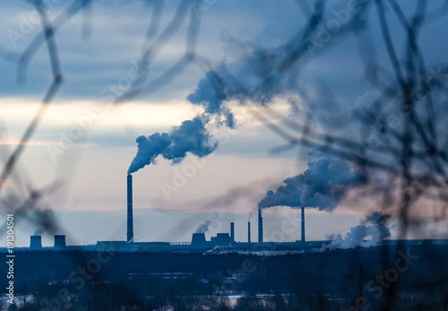 Smoke from pipes in the plant behind the branches of trees