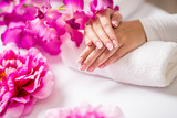 Closeup shot of beautiful female dands with nails of france manicure. Manicure and spa concept