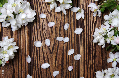 Spring flowers on wood - 191213134