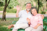 Happy Asian senior couple waving hand and smiling outdoor in the park - 191225707