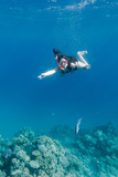 Girl in swimming mask diving in Red sea near coral reef - 191227977