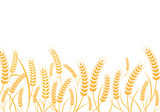 Agriculture wheat vector Illustration design - 191274574