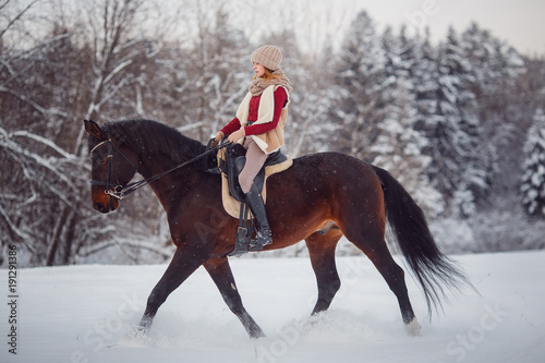Horse. Girl rider rides brown horse through winter forest in snow. Concept walk in farm.