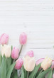 beautiful  tulips on white wooden background