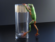 3D rendering of a realistic tree frog climbing on a glass.