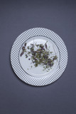 Dry flowers of thyme laying on white plate - 191325323