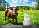 Glass jug with milk on wooden table with brown cow
