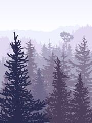 Vertical illustration of violet coniferous forest. © vertyr