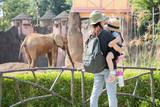 動物園 - 191348352
