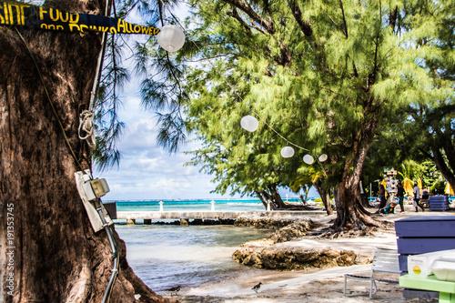 Papiers peints Pistache Caribbean Beach Resort