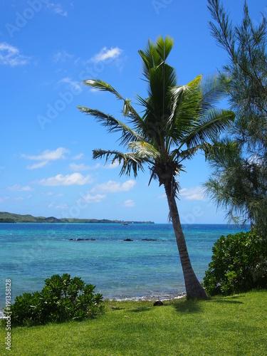 Fotobehang Tropical strand Petit coin de paradis