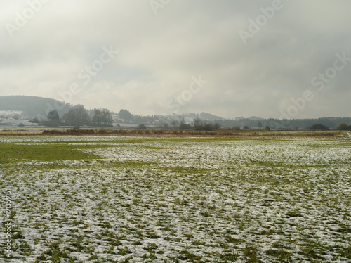 Foto op Canvas Gras Fresh fallen snow