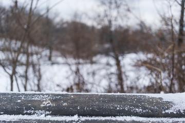parapet of Snow bridge in new york, central park.