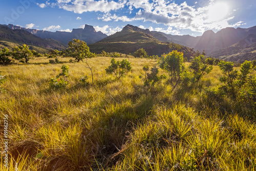 Mountain Landscape. Pathway leading to the mountains in South Africa. South African hiking. - 191462756
