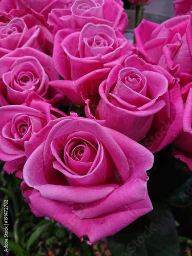 Plakat bouquet de roses