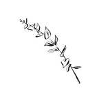 Hand drawn vector abstract artistic ink textured graphic sketch drawing illustration of eucalyptus branch plant isolated on white background - 191497521