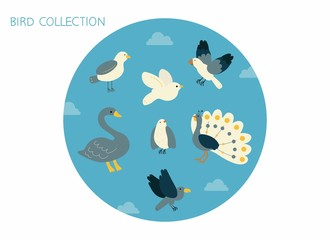 Bird Collection blue color illustration