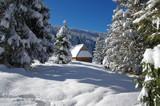 Chatka na Rusinowej Polanie Zimą