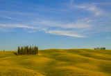 Tuscan landscape, fields and meadows on a warm sunny day - 191529101