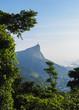 Quadro Corcovado Mountain seen from Vista Chinesa, Rio de Janeiro, Brazil