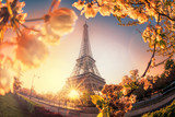 Eiffel Tower during spring time in Paris, France - 191543188