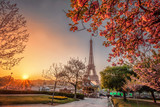 Eiffel Tower with spring trees in Paris, France - 191543312