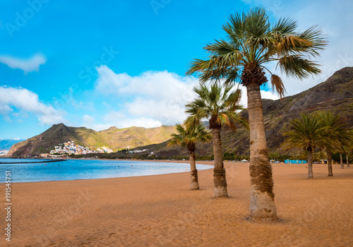 Fotobehang Canarische Eilanden palm trees Playa de las Teresitas Beach, Tenerife