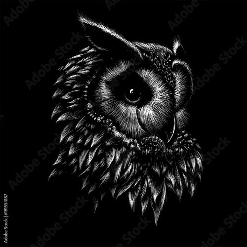 Foto op Plexiglas Uilen cartoon The Vector logo owl for T-shirt design or outwear. Hunting tattoo owl style background.