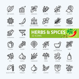 Spices, condiments and herbs  - minimal thin line web icon set. Outline icons collection. Simple vector illustration. - 191589940