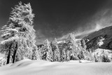 Alpine Landscape with fresh snow - B&W