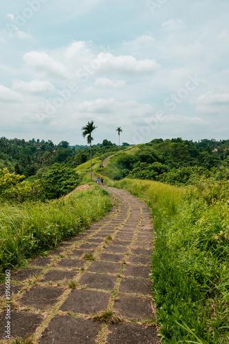 In de dag Bali Trekking path in Campuhan, Bali, Indonesia