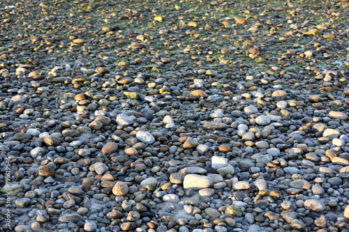 Fotobehang Stenen Pebbles on a beach