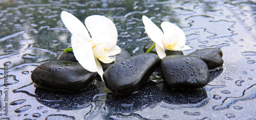 Staande foto Zen Two orchid flowers and stones. Spa background.