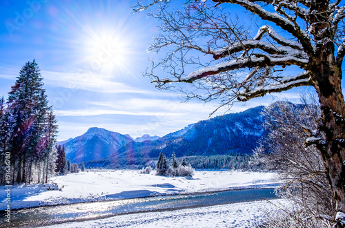Foto op Aluminium Lavendel karwendel mountains