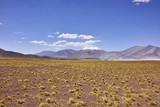 Arid Terrain Near Miniques Volcano Complex Chile - 191661134