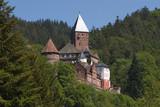 Burg Zwingenberg am Neckar - 191670779