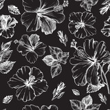 Decorative seamless pattern with ink hand-drawn Tropical hibiscus flowers and leaves. Vector illustration. - 191732575