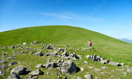A hiker and their dog walking up a green hill with blue sky in the English Countryside.