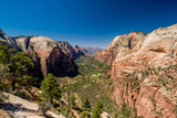 Landscape in Zion National Park - 191769311