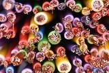 Colored copper electic cables closeup - 191771919