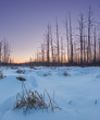 A winter's sunrise.